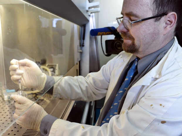 Professor Erwann Loret manuseia vacina contra HIV em Marselha. (Foto: Anne-Christine Poujoulart/AFP)