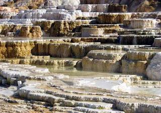 terrazas yellowstone