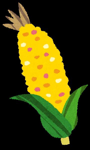 とうもろこしのイラスト(野菜 ... : 誕生日 メッセージ テンプレート 無料 : 無料