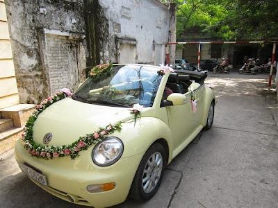 cho thuê xe cô dâu Volkwagen Beetle mui trần tại Hà Nội