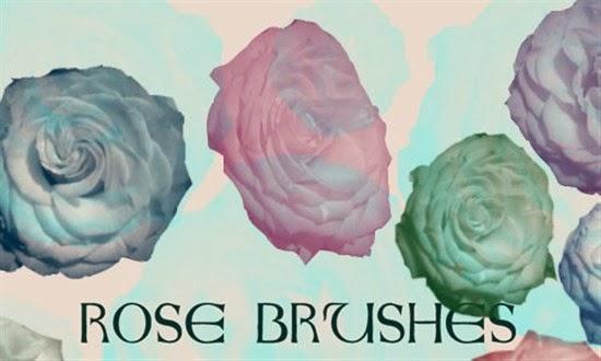 Photoshop Rose Brushes