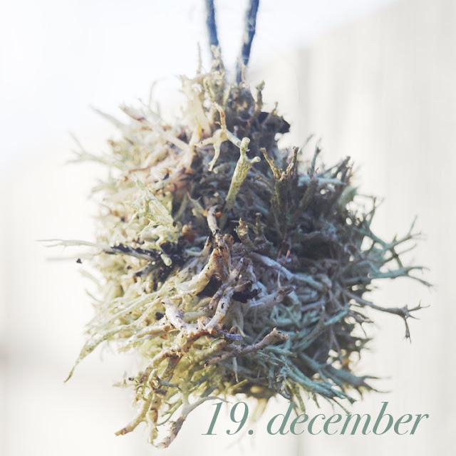 Julepynt af naturen materialer