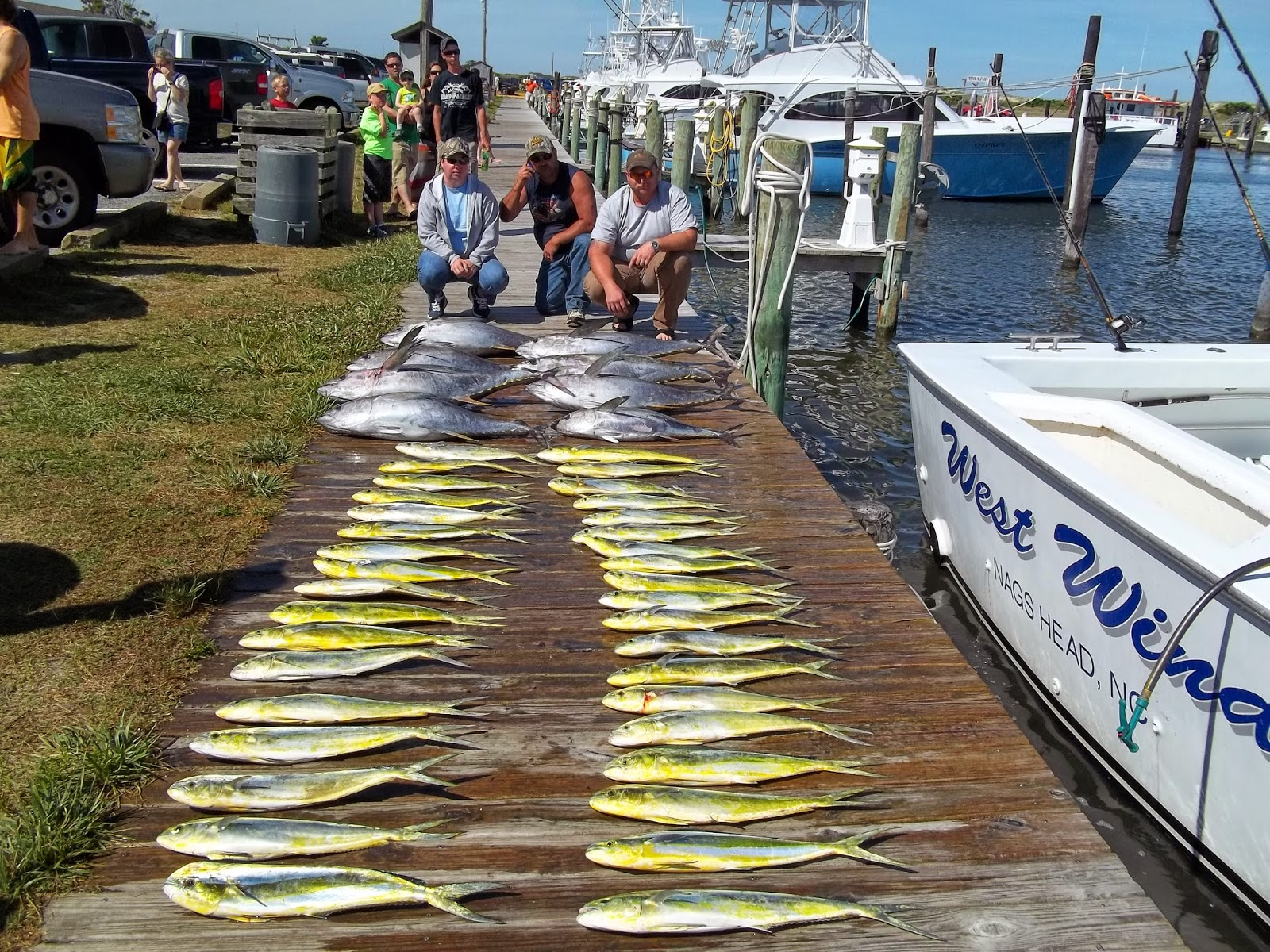 the ultimate saltwater fishing