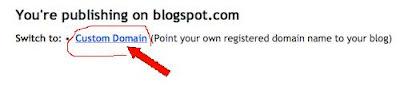 Using Dot.tk domain in Blogger