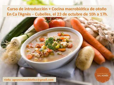 Curso de introducción + cocina macrobiótica de otoño