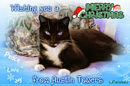 Merry Christmas Austin and family!