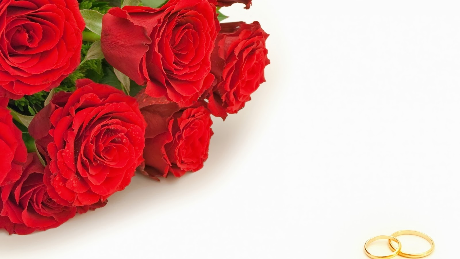 Red Roses, part 4