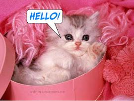 "Sweet Hello #_#"""