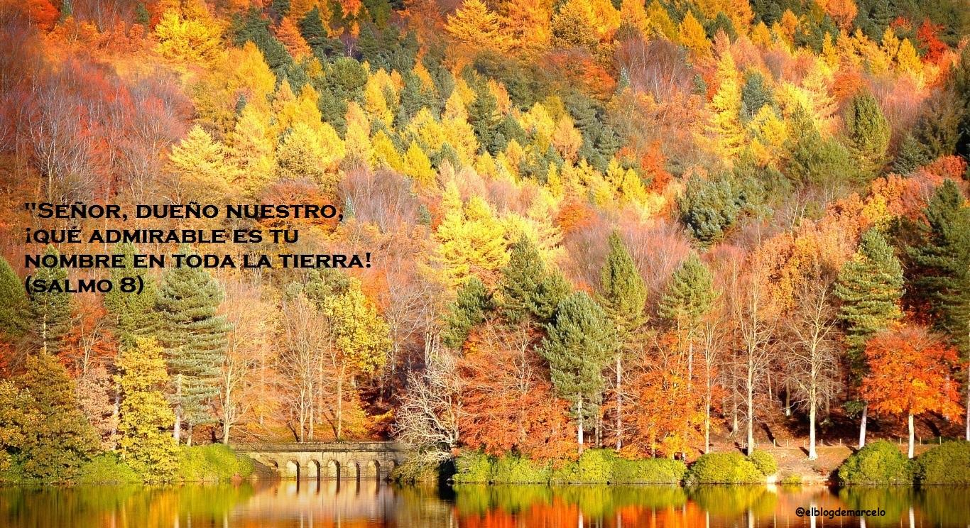 El blog de marcelo regalo 20 paisajes de oto o 20 - Fotos bonitas de otono ...