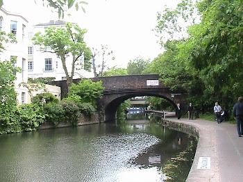 Il canale di Reagent
