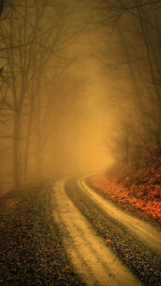 Misty Forest Road   Galaxy Note HD Wallpaper