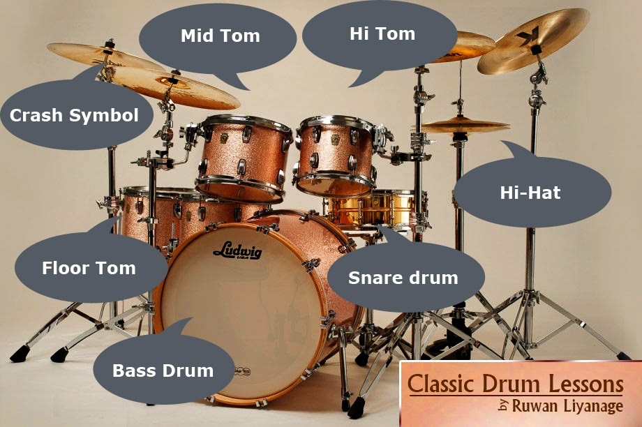 Fantastic Anatomy Of A Drum Kit Ensign - Internal organs diagram ...