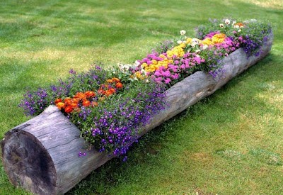 good garden ideas pinterest popular pins