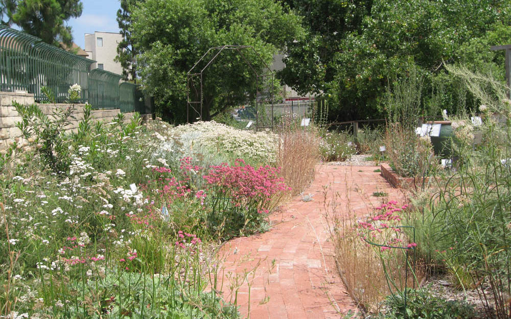 Designing Your U0027New California Gardenu0027: 3. Site Physical Assessment