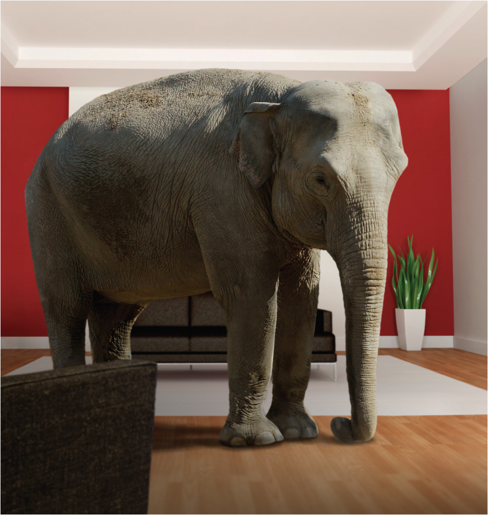 The Elephant In Our Living Room