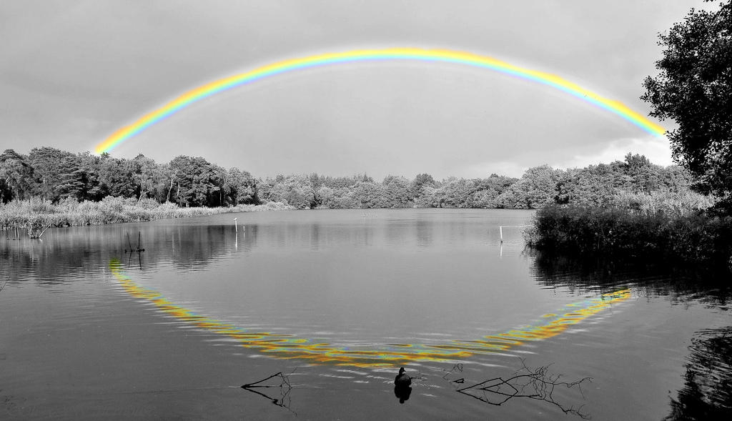 Beautiful Rainbow reflection Black and white photography with color