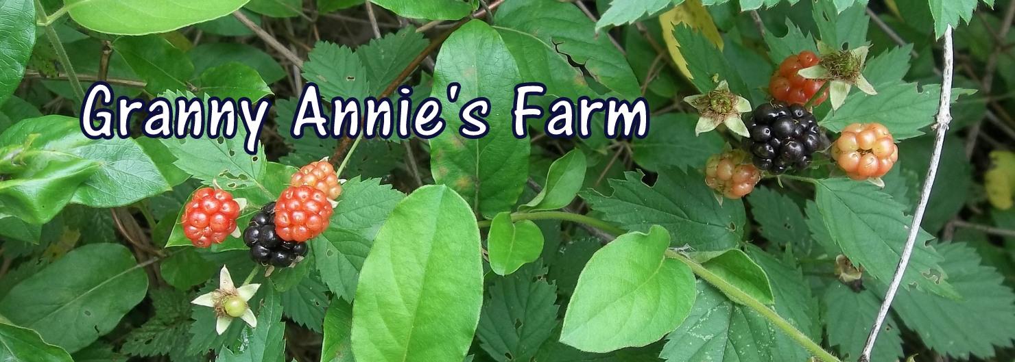 Granny Annie's Farm™