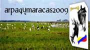arpa4ymaracas2009