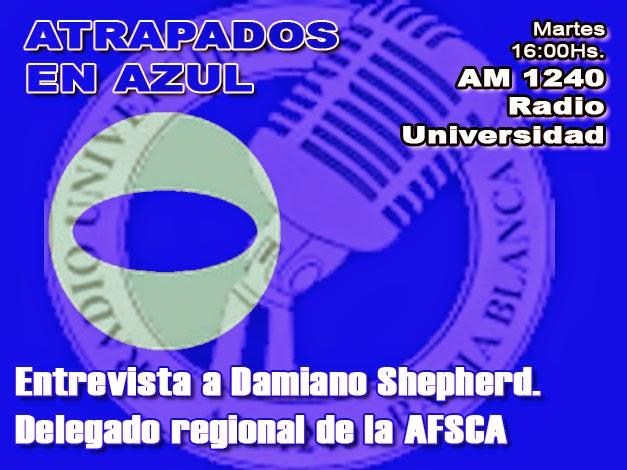 49. Damiano Shepherd, delegado regional de la AFSCA