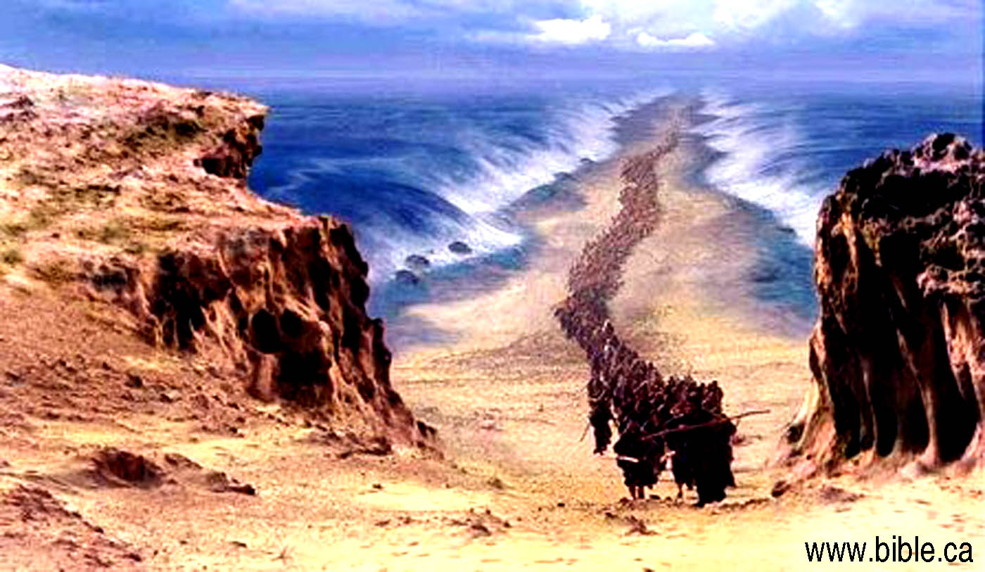 crossing the red sea Today in class i learned what the bible says about exodus 13-15 • after the pharaoh released the israelites, he regretted his decision he pursued the israelites.