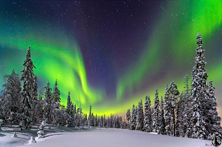 shimmering aurora in enigmatic lapland  finland - snow addiction