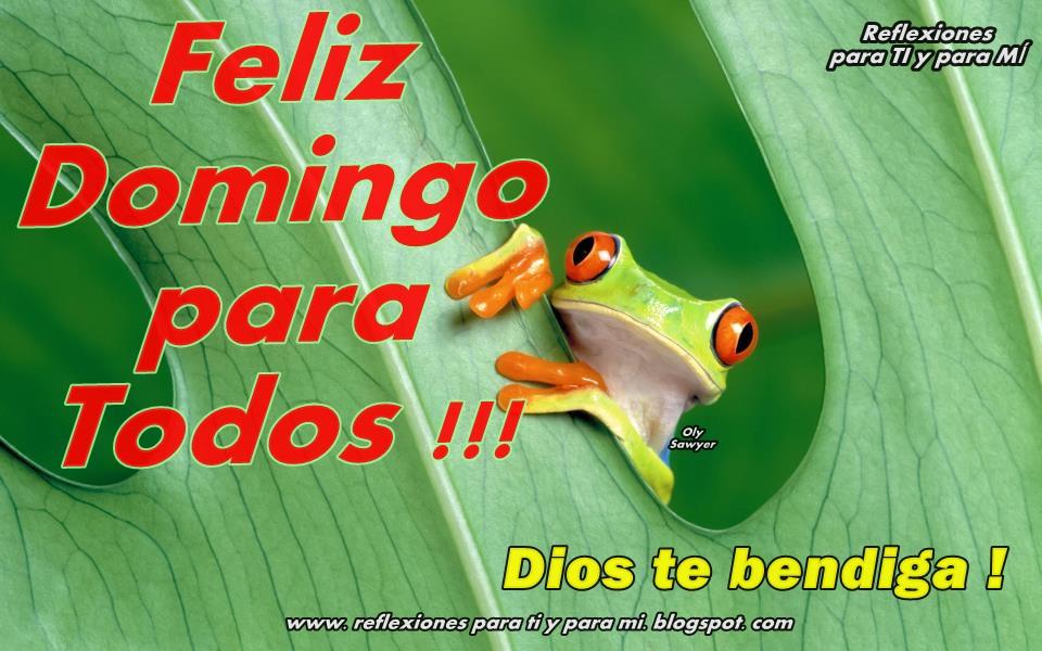 Feliz Domingo Dios Los Bendiga