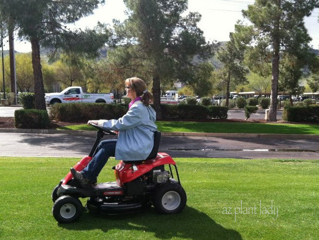 A Riding Mower For Small And Big Lawns Ramblings From A