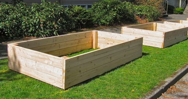 Seattle Garden Ideas Save Your Back With Raised Beds