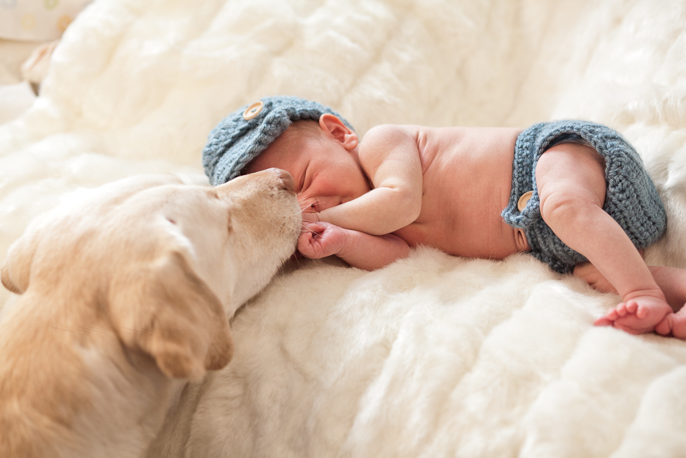 Boro Photography: Creative Visions - New Hampshire Newborn Photography - New England
