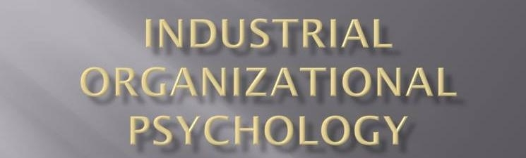 industrial organizational psychology What is i-o industrial-organizational (i-o) psychology is the scientific study of working and the application of that science to workplace issues facing individuals.