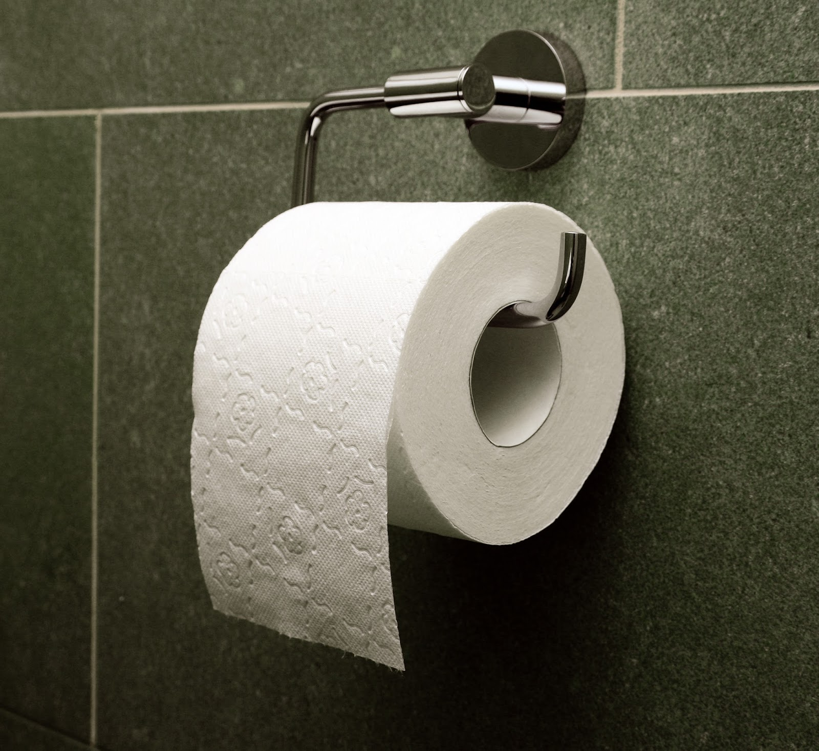 Every Day Is Special: August 26 – National Toilet Paper Day