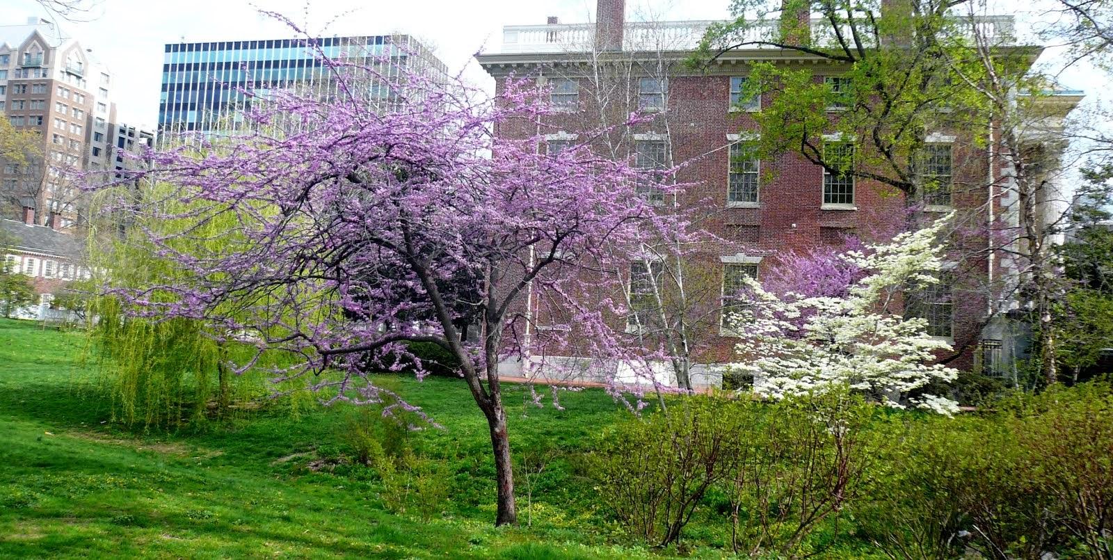 Spring Philadelphia