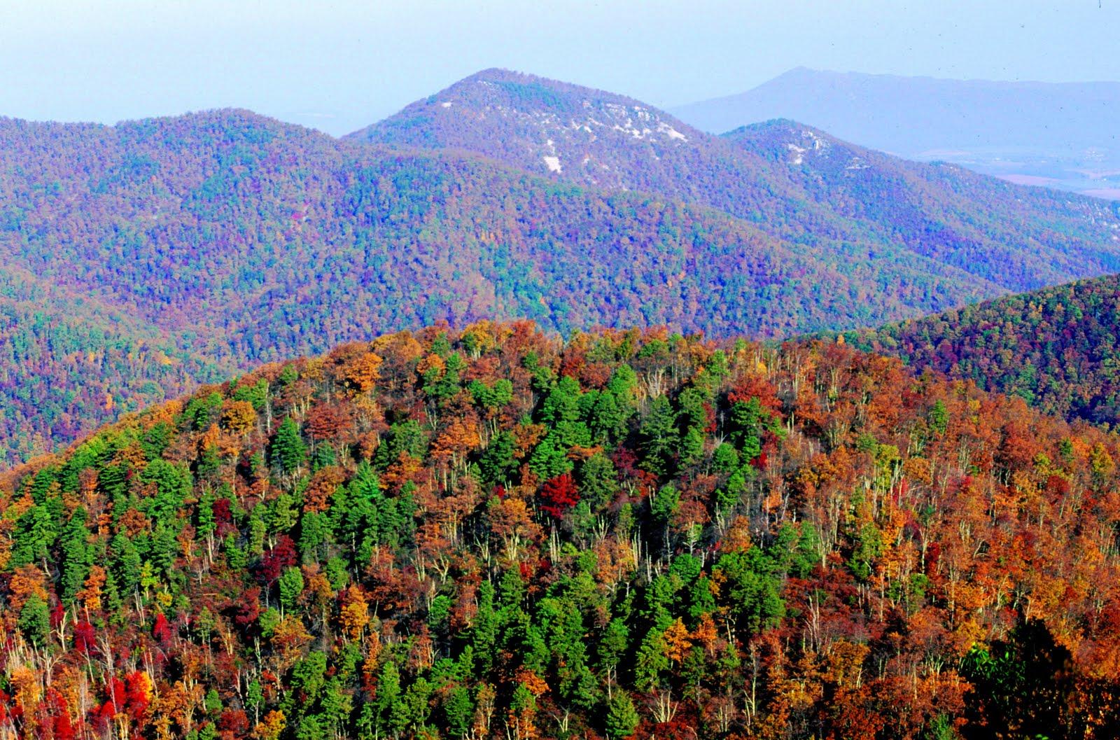 River Falls Virginia Virginia Fall Foliage