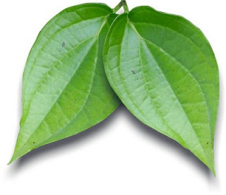 Betel Leaf Healthy Benefits