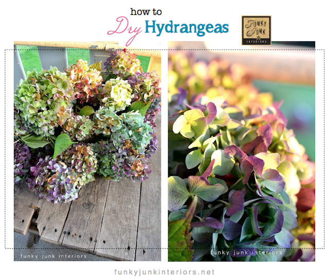 how to dry hydrangeas Funky Junk Interiors