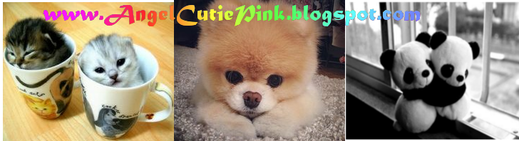 Angel Cutie Pink
