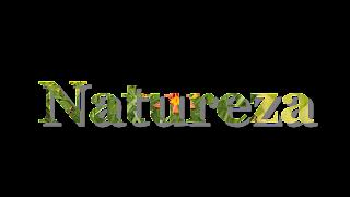 Titulo Natureza com sombra 1920x1080 fundo transparente