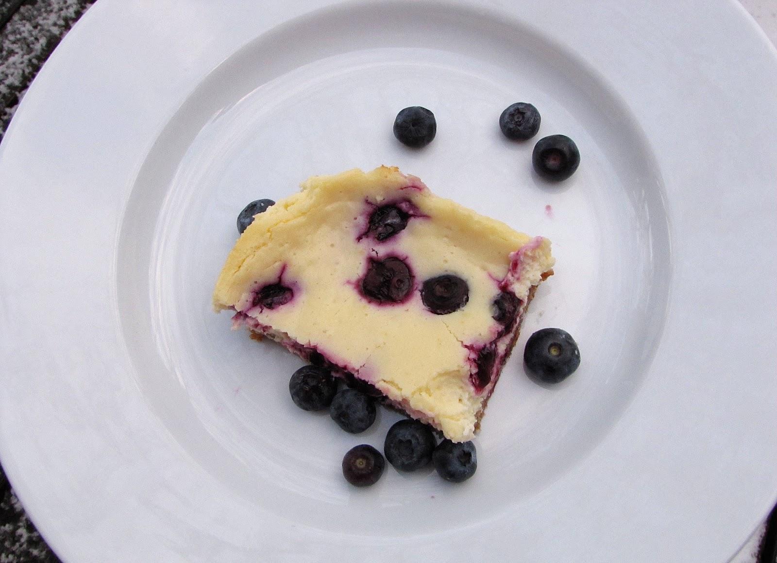 The Modest Homestead Lemon Blueberry Cheesecake Bars