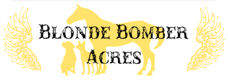 Blonde Bomber Acres