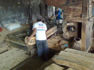 Proses pengolahan kayu untuk furniture