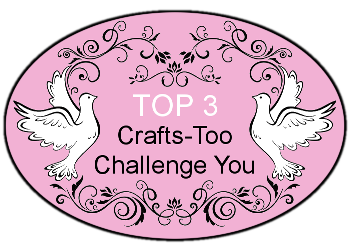Crafts-Too Challenge You Top 3