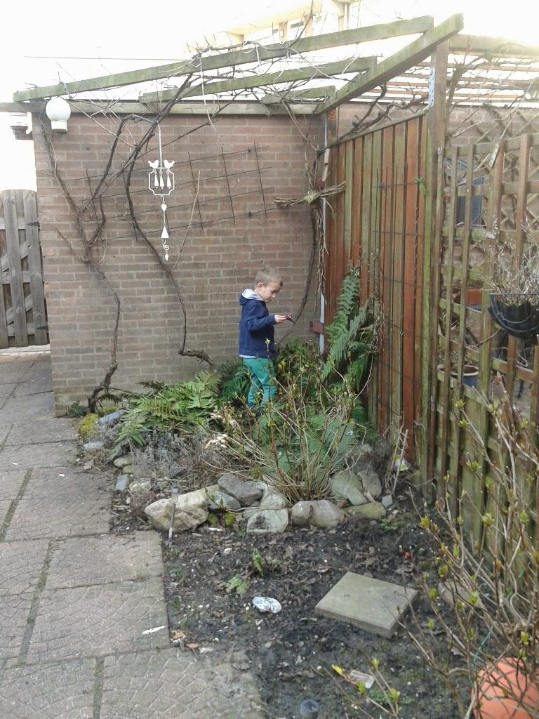 Uit mijn keukentje rondje tuin tuin klaar maken - Alle tuin ...