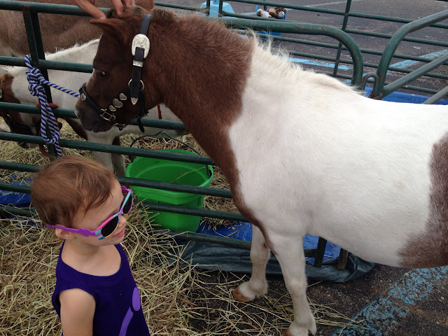 baby petting a pony