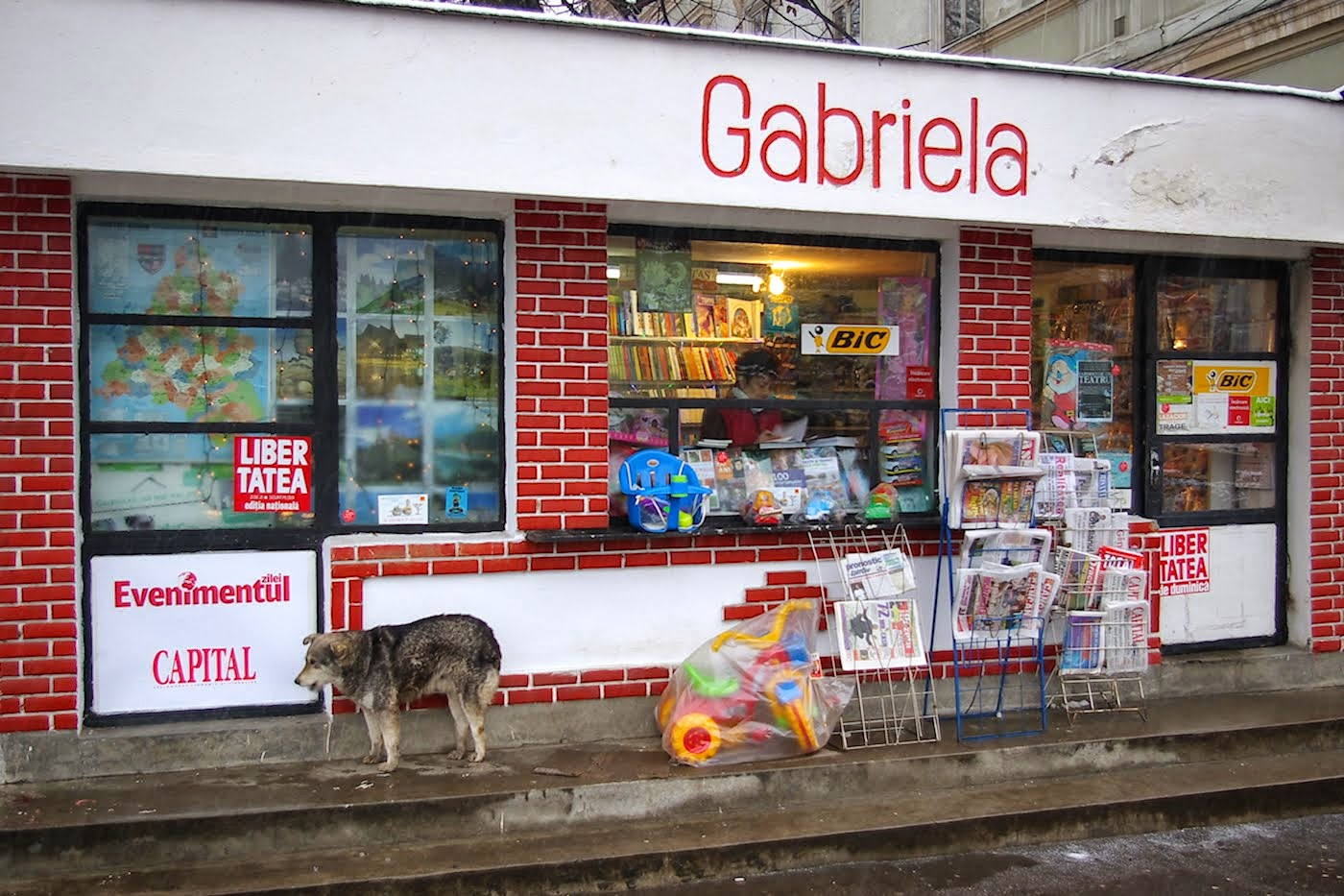 Librăria Gabriela