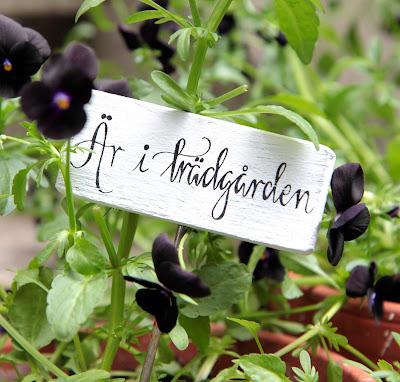 trädgårdsinspiration trädgårdsdesign blogg trädgårdsblogg svart trädgård
