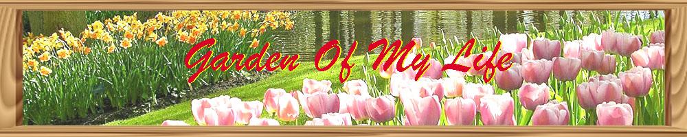 Blog Taman Ilmu
