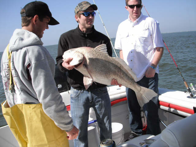 Galveston texas fishing reports monday march 07 2011 for Fishing report freeport tx
