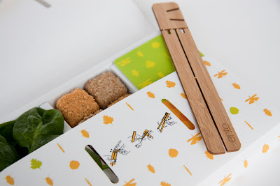 Cool Chopsticks and Creative Chopstick Designs (15) 13