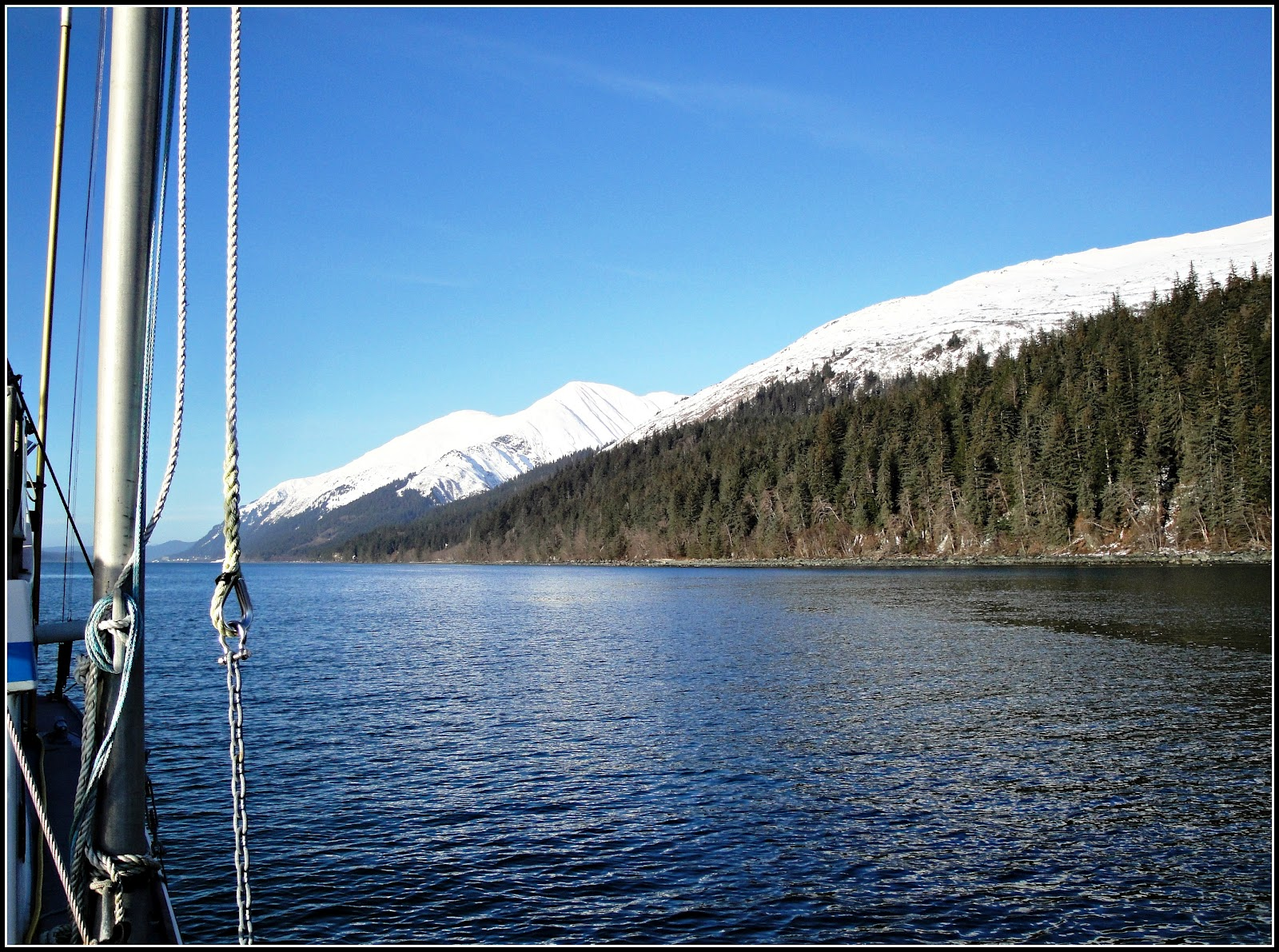 Sandra 39 s alaska photography february 4 2012 winter king for Juneau alaska fishing