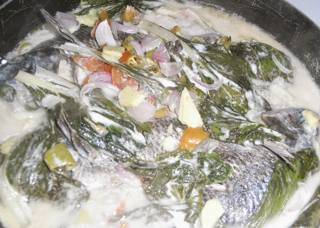 Timeless Ginataang Tilapia Quickfire Recipe